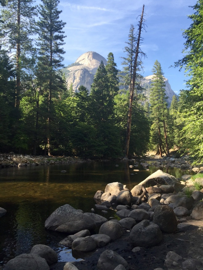Yosemite Valley - National Parks - Yosemite National Park - Yosemite - Jude Moonlight - Tenaya Creek - Quinby & Co.
