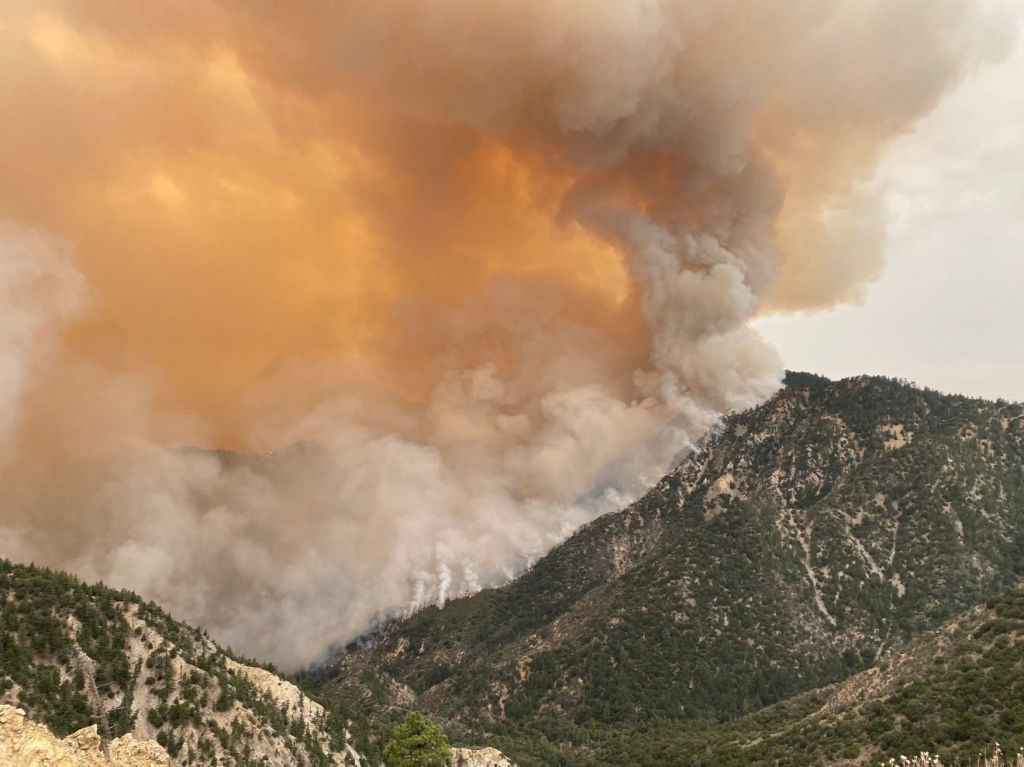Bobcat Fire - Los Angeles County- Los Angeles - Angeles National Forest - Wildfire