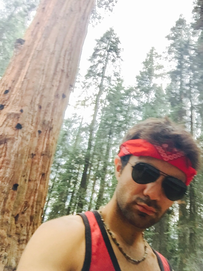 General Sherman - General Sherman Tree - Sequoia National Park - Sequoia - California - National Park - Ren Michael - Quinby & Co.
